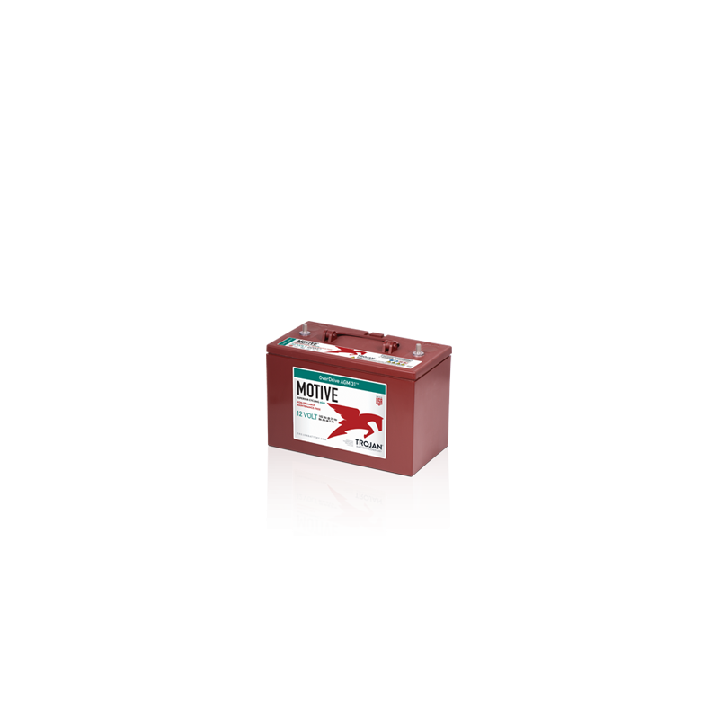 BATTERY VARTA POWERSPORTS AGM YTX14-4, YTX14-BS 12V 12AH 200A  - 1